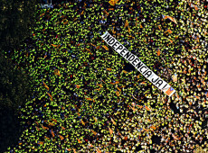 Catalunha independente