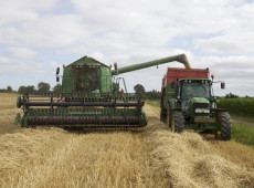 """""""É um desastre ambiental, não rende nada para o Brasil"""", diz Ladislau Dowbor sobre país priorizar agroexportação"""