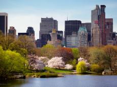 Com pandemia, primavera em Nova York marca renascimento após pior inverno da história