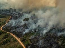 Como entender o impacto da Covid19 na Amazônia e 5 passos para evitar uma catástrofe