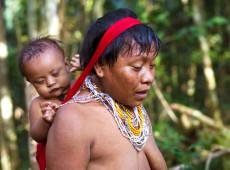 Estudo descreve como Yanomami estão usando estratégias ancestrais para enfrentar Covid