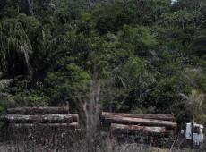 Governo brasileiro aproveita pandemia para apoiar devastação e invasão de terras indígenas