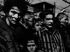 Bolsonaro e seus capangas não enganam. Quando na história cristãos ajudaram judeus?
