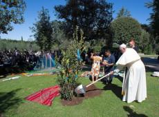 """Catequesis del Papa Francisco: La Tierra """"no es un depósito de recursos para ser explotados"""""""