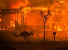 Austrália em chamas: mortos, desaparecidos, desabrigados e milhões de animais dizimados