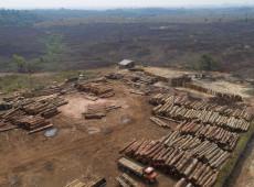 """""""Alemanha quer acordo UE-Mercosul, mas precisa ver queda no desmatamento"""""""