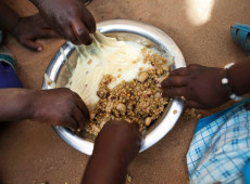 Com pragas e mudanças climáticas, leste da África sofre com nova crise alimentar