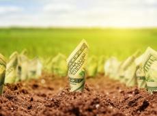 """COP-25: ¿Qué se entiende por """"financierización de la naturaleza""""?"""