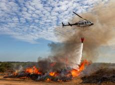 """""""Ainda que fogo na Amazônia seja apagado, dano já é irrecuperável"""", diz ambientalista"""