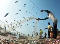 Direitos trabalhistas: os pescadores e a greve como instrumento de negociação