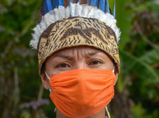 Vírus sobe o Rio Amazonas e coloca povos indígenas na iminência de um novo genocidio