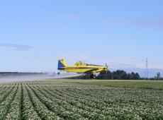 Afinal, o Brasil é ou não o maior consumidor de produtos agrotóxicos do planeta?