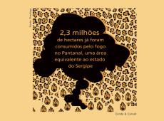 Conde e Carvall: Score! Fogo no Pantanal já destruiu mais de 2 mi de hectares