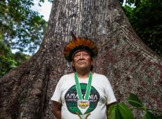 "Davi Kopenawa ganha ""Nobel alternativo"" e faz alerta: garimpo está matando os Yanomami"