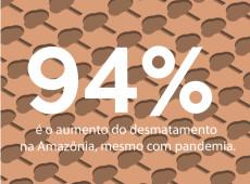 Conde Carvall: Score! mesmo na pandemia, desmatamento na Amazônia aumenta