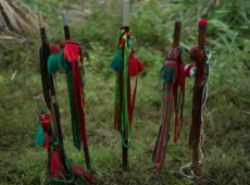 Três dirigentes assassinados em quatro dias no departamento colombiano do Cauca