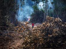 Brasil pode ser 'vilão' da diplomacia do clima, afirma pesquisador