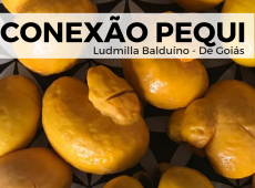 Ludmilla Balduíno: A pessoa não é tóxica, a situação é que é