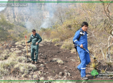 Evo Morales apoya propuesta de sellar alianza multilateral para salvar la Amazonia