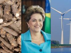 Sobre saudar a mandioca e estocar vento: Dilma estava certa