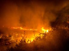 Pantanal: Quem são as mãos responsáveis? 98% das queimadas são oriundas de ações humanas