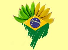 Familícia do Bananistão: mais um conto de farsas dos Parapoliciais no Rio de Fevereiro