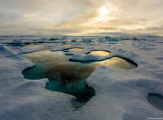 Cientistas encontram microplástico no gelo do Ártico
