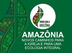 Ecologia integral: Por que os generais bolsonaristas temem o Sínodo Pan-Amazônico