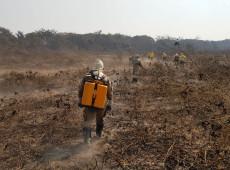 Multas do Ibama dizem que empresa ligada a BTG Pactual foi quem mais devastou Pantanal