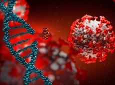 Estudo reforça relação entre perfil genético e resposta à covid-19