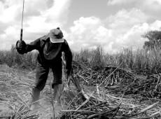 """América Latina: """"governos de direita destruíram direitos econômicos e sociais"""", diz especialista"""