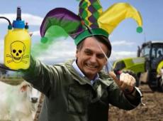 Boçal de Ipanema: Bolsonaro é ridicularizado na TV alemã por devastação da Amazônia