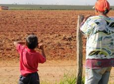 ONGs pressionam Alemanha contra exportação de agrotóxicos proibidos para o Brasil