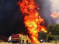 Austrália: Nova Gales do Sul decreta estado de emergência por incêndios
