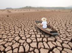 Mais de 170 ONGs declaram que compensação de carbono é falsa solução para crise climática