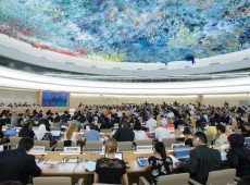 ONGs fazem declaração conjunta contra governo Bolsonaro na ONU