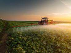 Dia do Controle da Poluição por Agrotóxicos: liberação com Bolsonaro é a maior em 15 anos