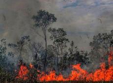 Discurso de Bolsonaro enfraquece combate às queimadas na Amazônia