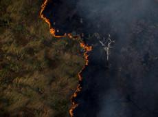 Seca: na Amazônia, é como se 4 cidades de São Paulo estivessem derrubadas e à espera do fogo para queimar