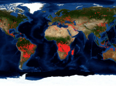 Incêndios da Amazônia à Sibéria: áreas onde fogo não é comum também estão ardendo