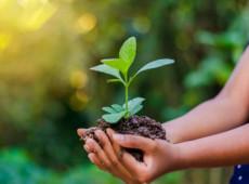 Patrus Ananias | Precisamos dar um sentido mais integrado à palavra desenvolvimento