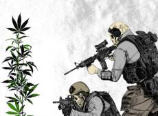 """Prejuízos políticos e sociais marcam meio século da fracassada """"guerra contra as drogas"""" dos EUA"""