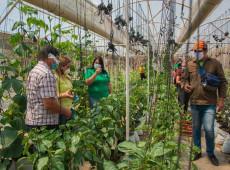 Para superar crise na Venezuela, Nicolás Maduro aposta na criação de hortas urbanas