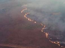 """""""Estamos diante de um Estado de exceção ambiental"""", diz  ecologista"""