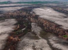 Combate ao desmatamento foi enfraquecido durante presença de militares na Amazônia