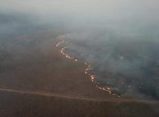 Saiba quais são os interesses econômicos que comandam a destruição da Amazônia