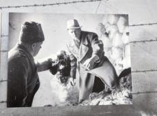 Exposição na sede da ONU lembra 75 anos da libertação de Auschwitz
