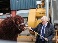 Conservadores ganham com ampla maioria no Reino Unido, e Johnson permanece como premiê