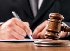 Conheça nova classe profissional juridicamente dependente das empresas ou do Estado