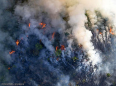 Sob controle de Mourão, junho registra maiores queimadas na Amazônia em 13 anos
